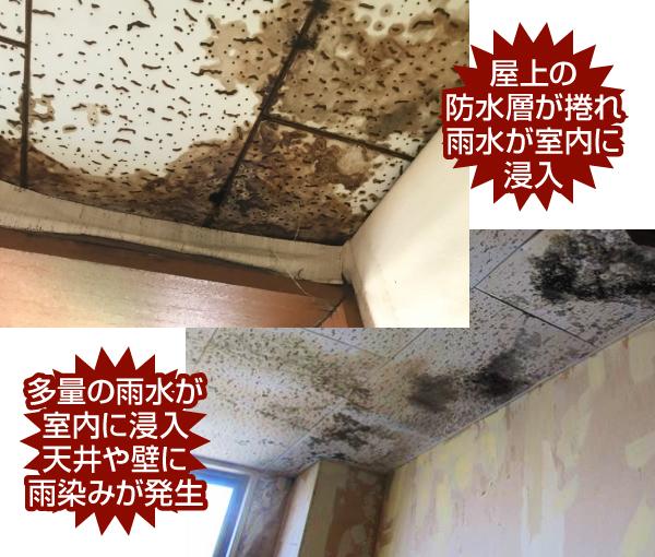 屋上の 防水層が捲れ雨水が室内に浸入し天井や壁に雨染みが発生