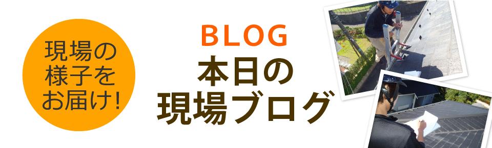 野洲市、湖南市、守山市やその周辺エリア、その他地域のブログ